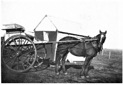 P. J. Carseldine's Milk Run